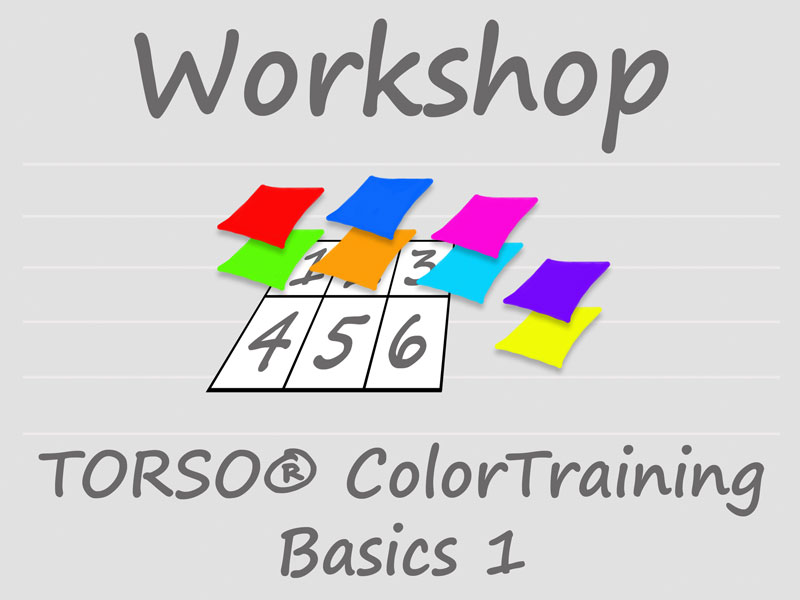 Workshop TORSO ColorTraining