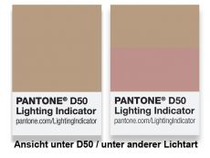 Pantone Lighting Indicator D50