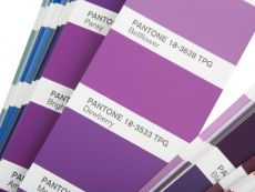 PANTONE FHI Color Guide Paper TPG