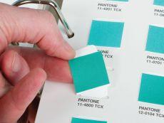 PANTONE Textile Cotton Chip Set Ring Binder